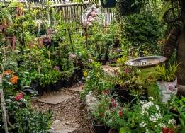 Gardens & Pets