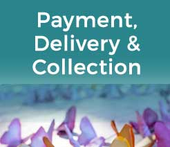 Payment, Delivery & Collection