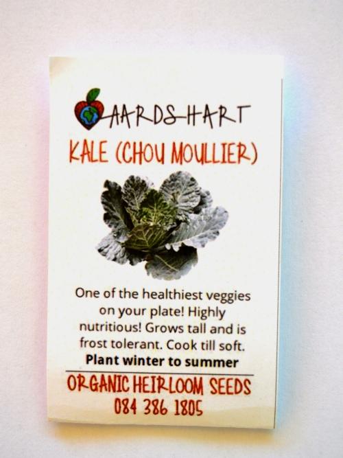 Kale (Chou Moullier)