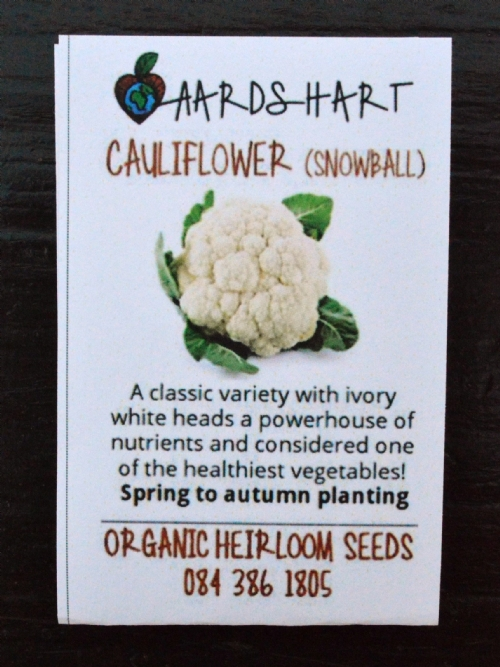 Cauliflower (Snowball)