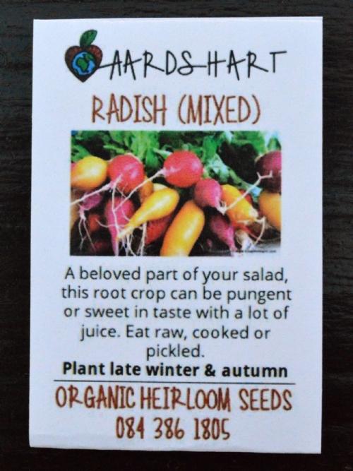 Radish (Mixed)