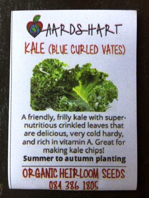 Kale (Blue Curled Vates)
