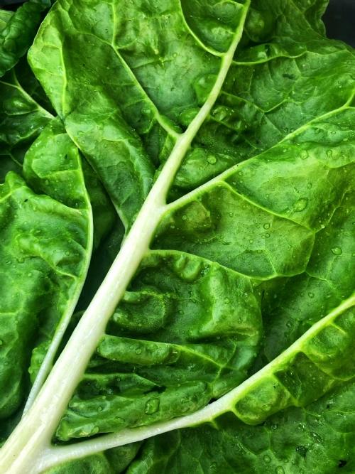 Spinach, bunch