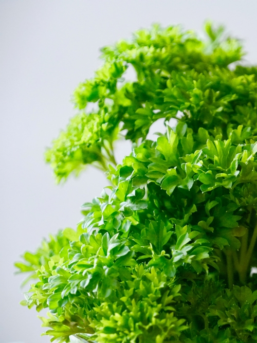 Parsley, 30g
