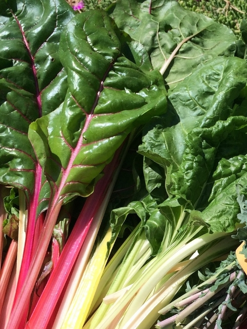 Spinach - Swiss Chard, 300g