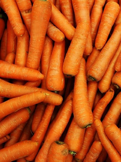 Carrots, 10kg