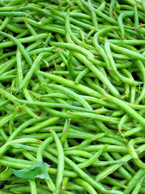 Green Beans, 4kg