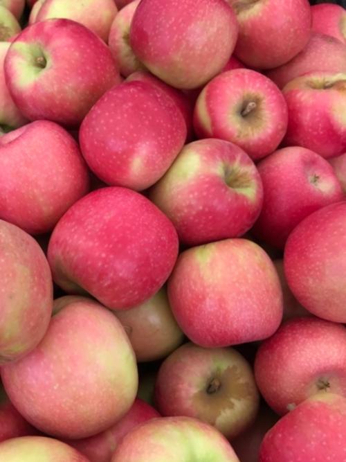 Apples - Crispy Pink, 8x1.5kg