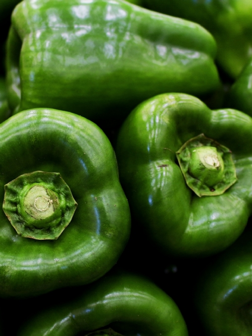 Green Peppers Class 1, Box of 24