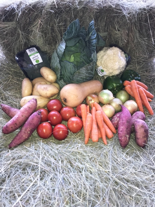 Family Veggie Box
