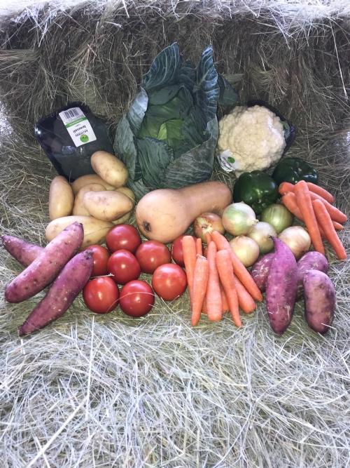 Family Veggie Box