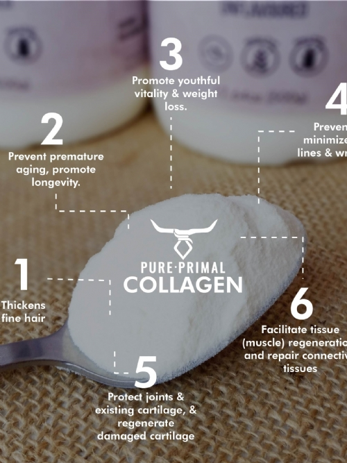 Primal Protein Hydrolysed Collagen Peptides