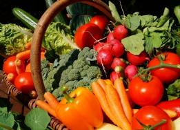 Organic Veg, Fruit & Herbs