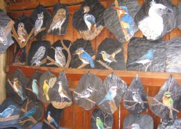 Painted Birds on Slate and Tile