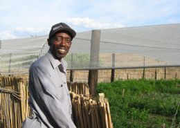 Reeds Organic - Shadreck Mhlanga