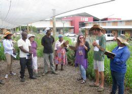 Riversands Incubation Hub: Mzingisi Dingane - Thuba Lokusa Ltd; Bennet Kekana - Lestja Fresh Produce Pty Ltd; Lindiwe Makhanya - Ngoba Indlala Vegetables Alex Woolfe - Edible Organics