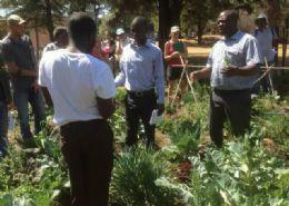 Future Seed - Simba Mubaiwa